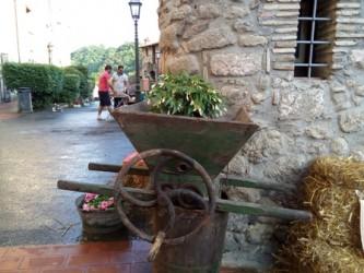 BORGO IN FIORE - Bassano in Teverina 1-3 luglio 2016