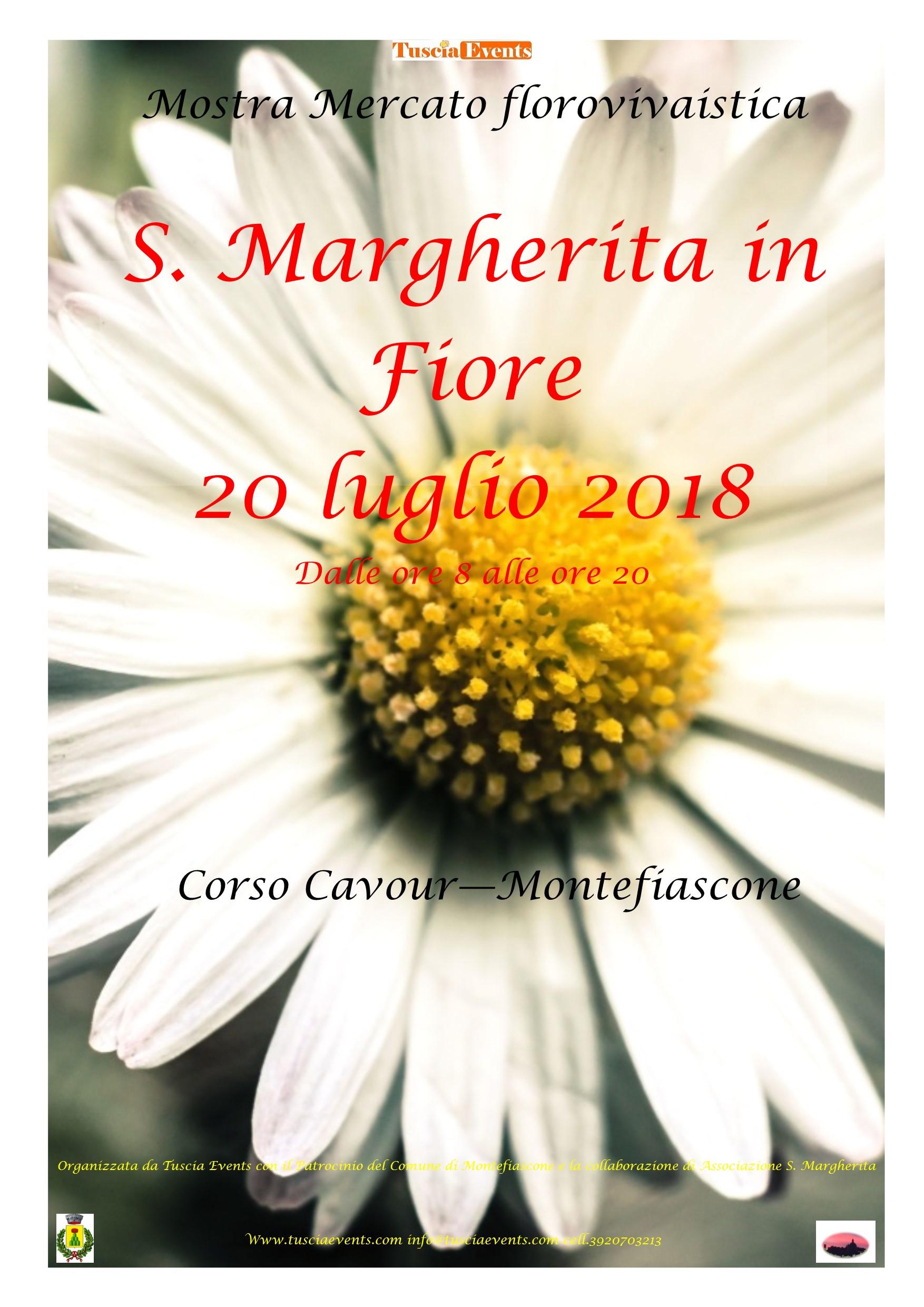 locandina s. margherita in fiore